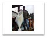 April 6, 2018 : 47 lbs.Halibut - Race Rocks - Buddy's day out with Daryl from Victoria