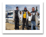 June 28, 2018 : 13 to 9 lbs. Chinook Salmon & Hatchery Coho Salmon- Day 2 of 3 - Sooke BC - Zach, Sheldon, & Peter from Edmonton Alberta.