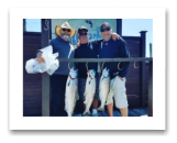 July 14, 2018 : 15, 9, 8 lbs. Chinook Salmon - Sooke BC - Day 1 - Find & Skins Derby with Ron, Steve, & Spencer