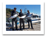 July 20, 2018 : 19, 15, 13 lbs. Chinook Salmon - Sooke BC - Ryan from Kamloops BC, with Neil & Jeff from Kelowna BC
