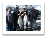 April 22, 2014: 21 & 20 lbs. Halibut - Constance Bank  The Chow Family and friends from Vancouver and Victoria BC