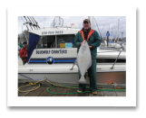 March 23, 2014: 28 lbs. Halibut - Albert Head  - John & Todd from Vancouver Island BC