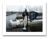 May 8, 2014: 71 lbs. Halibut - Constance Bank  - Captain Roy's day out with buddies
