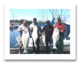 May 20, 2014: 23, 25, 28, 38 lbs. Halibut - Constance Bank -  Vet's Day out with Ray, Bud, Don, & Roy