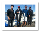 June 7, 2014: 6, 12 lbs. Chinook Salmon - Constance Bank -  McLlenan Ross Crew from Edmonton Alberta and Yellowknife NT