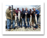 June 29, 2014 :12 to 20 lbs. Chinook Salmon - Sheringham  Point - Group Trip with buddies from all over the world.