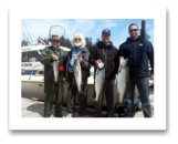 July 18, 2014 : 17, 14, 8 lbs. Chinook Salmon & Hatchery Coho - Race Rocks - Trevor from Winnipeg, Russ from Whitehorse, Shawn & Al from Sooke and Victoria
