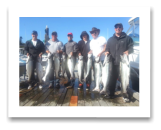 August 2, 2014 : 15, 16, 17, 18, 18, 19, 20, 20, 21, 24, 29.5 lbs. Chinook  - Otter Point - Sooke Salmon Enhancement Fishing Derby Day 1 of 2 - The Morin Group from Vancouver BC and Alberta
