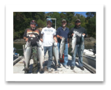 August 9, 2014 : 17,16,16,15 lbs. Chinook and Sockeye Salmon- Muir Creek - Singer Valve Crew Day 2 of 2