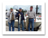 August 12, 2014 : 21 lbs. Chinook, Coho & Sockeye Salmon - Muir Creek - Day 1 of 3 - Dick, Scott, & Chuck from Washington. This is the 4th year in a row going out with Roy on the Blue Wolf.