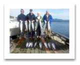 October 3, 2014 : Limit of Wild Coho & Hatchery Coho Salmon - Secretary Island - William & Pete from Alberta with Bill & Jane from Slocan Park BC