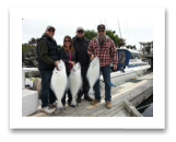May 25, 2015 : 24, 23, 18 lbs. Halibut - Race Rocks - Terra, Paul, George, & Ron from Duncan BC