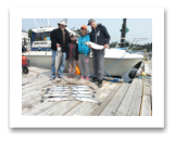July 8, 2015 : 19 & 11 lbs. Chinook Salmon Coho Salmon & Limit of Pink Salmon - Sheringham PT - Luke, Skye, Howard, & Oliver from Red Deer and Victoria BC