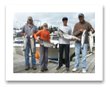 August 30, 2015 : 24, 18, 10, 10 lbs. Chinook Salmon & Pink Salmon - Muir Creek - Fun day with friends neighbor John & Isaac from Sooke BC with Dave & Ryan from Victoria BC