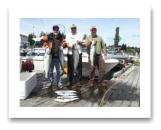 August 28, 2015 : 21, 17, 15, 12 lbs. Chinook Salmon, Hatchery Coho, & Pink Salmon - Muir Creek - Brian from Calgary with Fernando & Bill from Victoria BC
