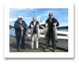 September 5, 2015 : 17, 15, 14, 13, 9 lbs. Chinook Salmon & Hatchery Coho - Otter Point - Terry & John from California with Brent from Vancouver BC