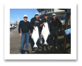 March 5, 2016 : 28, 23 lbs. Halibut - Albert Head - Dave, Garth, Milt, & Howard from Kelowna, Nelson, Vancouver, & Victoria BC