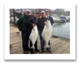 March 2, 2016 : 47 & 22 lbs. Halibut - Albert Head - Scott, Rob, Don, & Sean from Vancouver BC