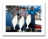 March 30, 2016 : 33, 32, 26 lbs. Halibut - James Island - Friends day out with Dan & Boinky