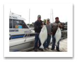 April 28, 2016 : 42, 21 lbs. Halibut - Race Rocks - Ken, Mike, & Brian from Penticton BC