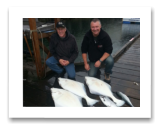 May 28, 2016 : 42, 40, 38 lbs. Halibut & 3 Winter Springs - Race Rocks - Friends day with Garth & Andy from Vancouver BC