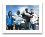 June 13, 2016 : 24, 10 lbs. Chinook Salmon - Sheringham Point - Lauren, Ryan, Hillery, & Carlin from Louisiana
