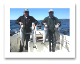 August 14, 2016 : 16, 15, 15, 14 lbs. Chinook Salmon - Trap Shack - Day 1 of 3 - Horst & Byron from Edmonton Alberta