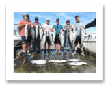 August 26, 2016 : 12 to 22 lbs. Chinook Salmon &  Hatchery Coho to 11 lbs - Otter Point - Day 1 of 2 - Big Al from Calgary and Crew
