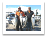 September 3, 2016: 24, 20, 16, 15 lbs. Chinook Salmon - Muir Creek -  Keith & Tyler from Seattle Washington