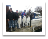 February 20, 2017 : 39, 36, 25 lbs. Halibut - Albert Head - Warren, Jim, Spencer, & Chris from Victoria BC