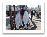 March 19, 2017 : 45 & 44 lbs. Halibut  - Albert Head - Carl & Greg from Vancouver BC