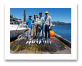 July 29, 2017 : 17.5 lbs. Chinook Salmon & Pink Salmon - Trap Shack - 7th Place Consultants Derby -  Ryan Lesyshen, Brandon Johnson, Allison Maftin, & Rose Sinnott from Victoria, Sooke, and Burnaby
