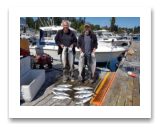 August 15, 2017 : 20, 18, 16, 15, 12 lbs. Chinook Salmon & Pink Salmon - Muir Creek - Day 2 - John & Joel 10th year fishing with Blue Wolf