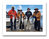 August 20, 2017 : 15, 14, 13, 11 lbs. Chinook Salmon & Pink Salmon - Muir Creek - Day 2 of 3 - Dennis, Dennis, Darren, & Troy from Alberta and Victoria BC